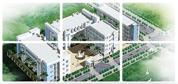 北京天润星工贸有限责任公司是国内知名的胶带生产厂家